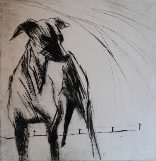 storhund_birgit_backman